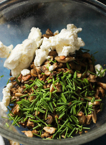 Mushroom Caramelized Onion Tarts