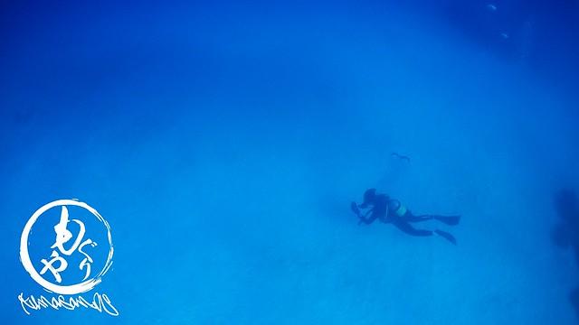お久しぶりに黒島ブルー♪