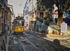 Tram at Lisbon