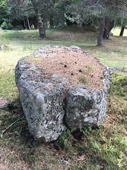 Menhir ou table en losange néolithique - Photo of Saint-Sauveur-en-Rue