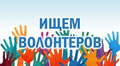 volunteers_2.png