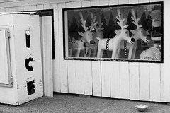Store with Santa and Reindeer in window