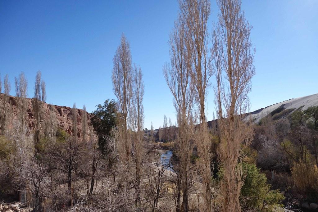 San Pedro Atacama - Valle de Jere 2