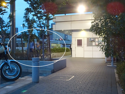 大井パーキングエリア(西行き下り)