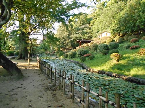 jp-matsuyama-Parc Dogo (1)