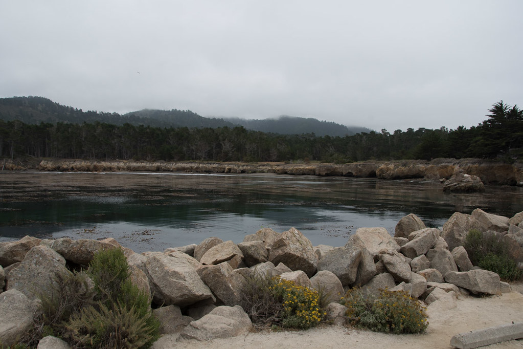 Whalers Cove | Point Lobos State Reserve