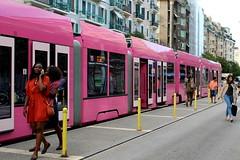 le tram rose