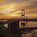 Severn Bridge in golden light