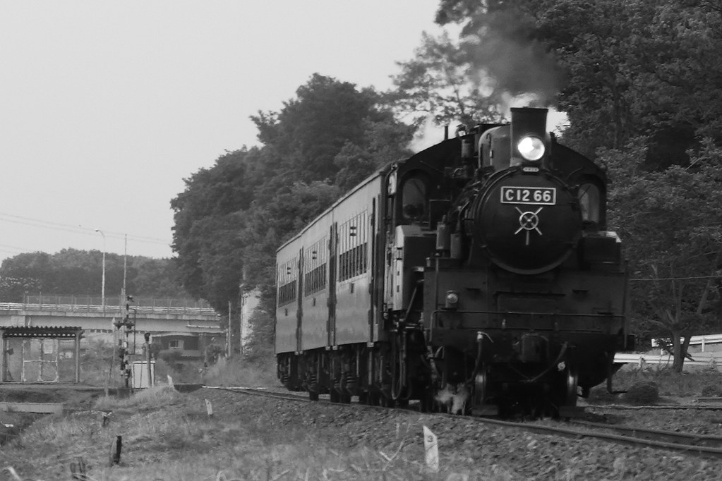真岡鉄道 C12