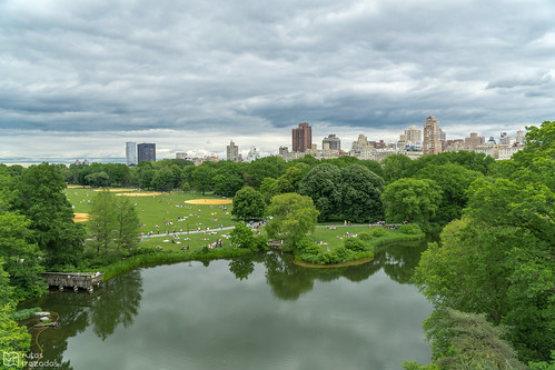 Central Park from Belvedere