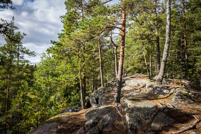Askolan hiidenkirnut maisemapolku metsä luonto (1 of 1)