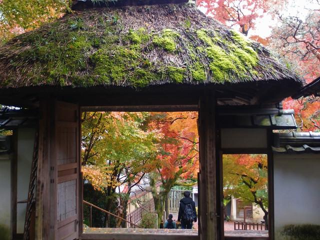 anrakuji_kyoto026