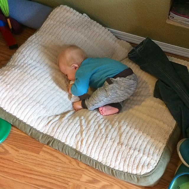 Just my son, relaxing on Maggie's dog bed. 😂