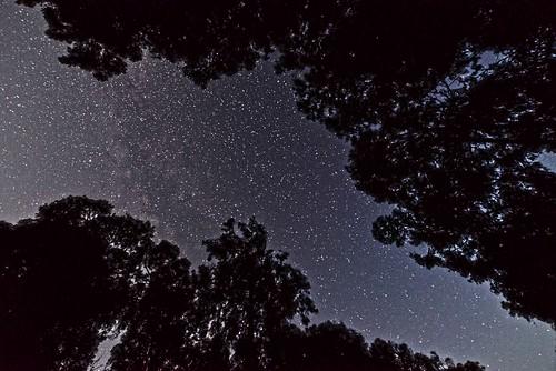 Stars CINP DSC_5236