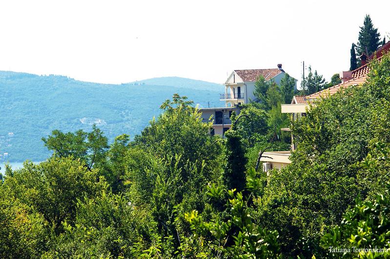 Дома на окраине Херцег Нови
