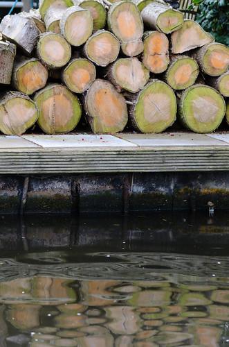 Reflection: log pile
