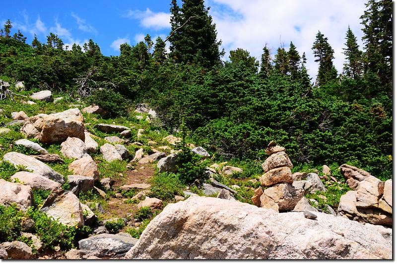 A talus field near the ridge 2