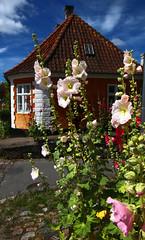 Sjælland