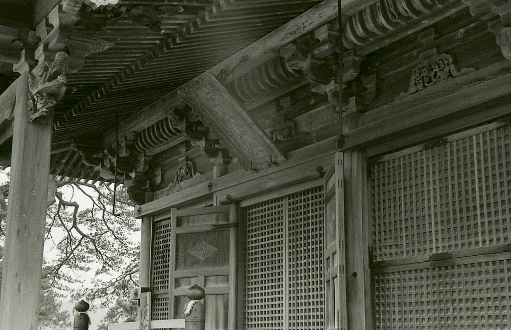 ズミクロン  仙台312.jpg