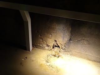 地下的積水