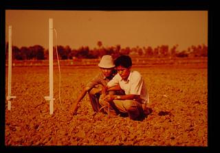 Activities Of Tarc = 熱帯農業研究センターの活動
