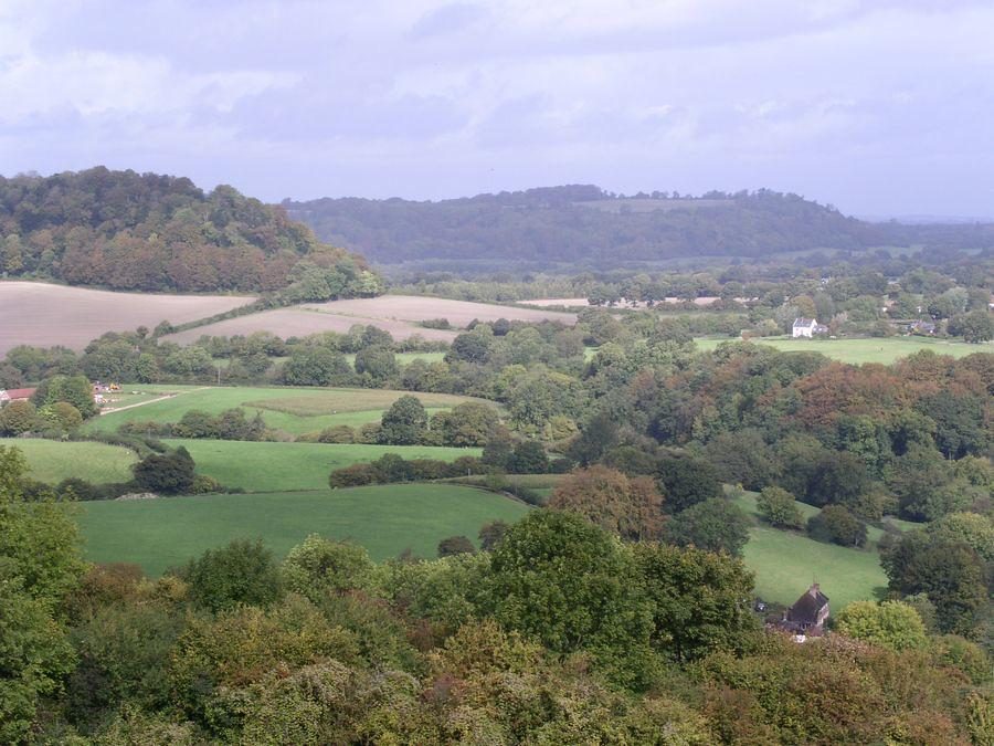 View towards Hawkley