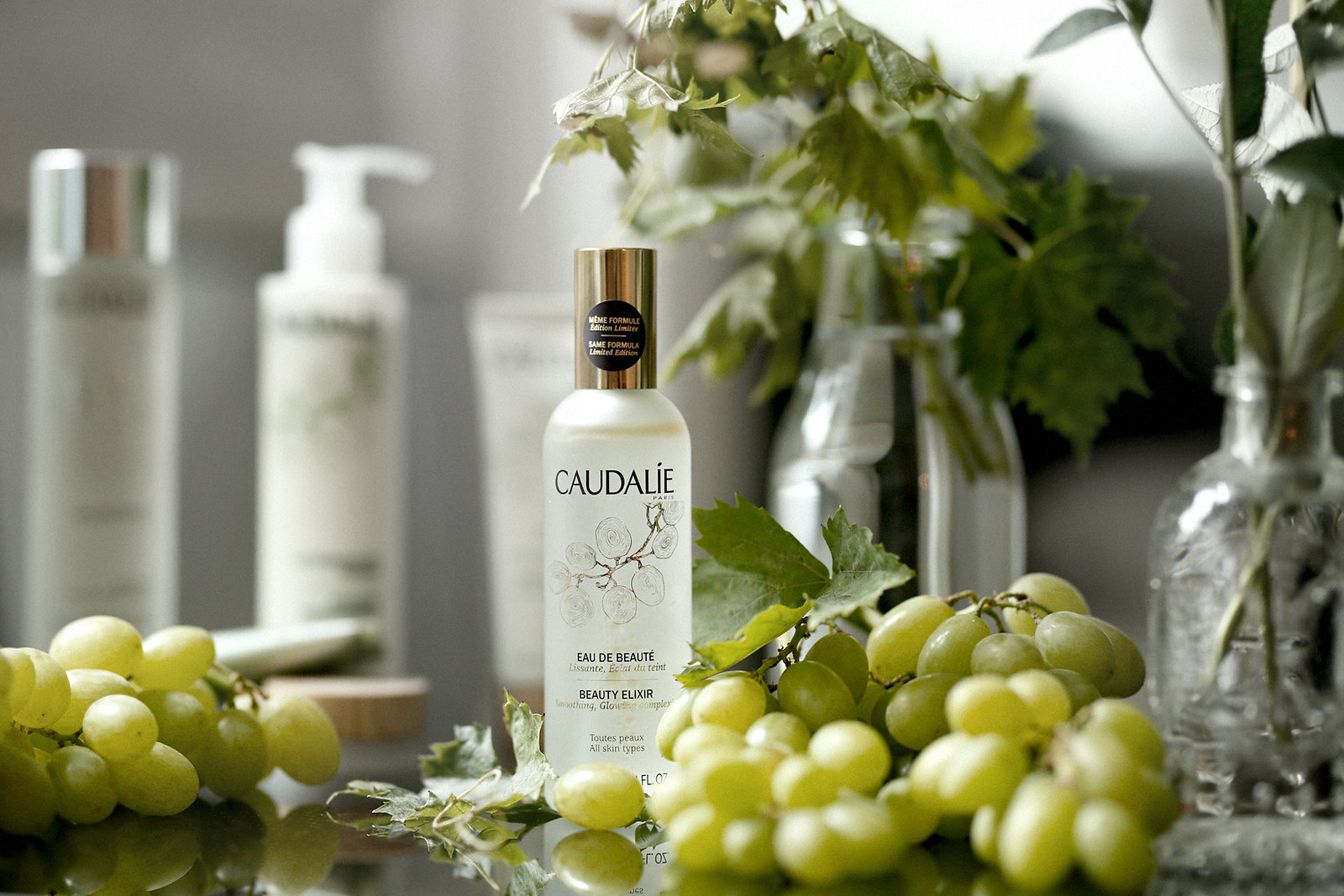caudalie eau de beauté beauty elixir french beauty wine grapes weintrauben vino vines nature cosmetics mist water spray rosie huntington campaign summer francaise beautyblogger germanblogger cats & dogs beautyblog ricarda schernus düsseldorf 4