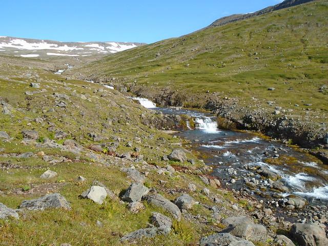 Stream in Hornstrandir