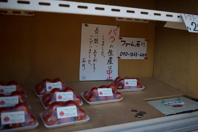 20161210-浜石岳-0097.jpg