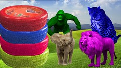 Learn Colors With Car Tires For Kids | Learn Colors With Cars Tires Animals | Songs For Toddlers