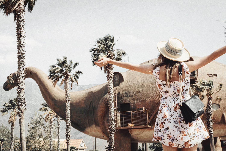 palm_springs_thewhiteocean_lenajuice_azalea_dress_california_05