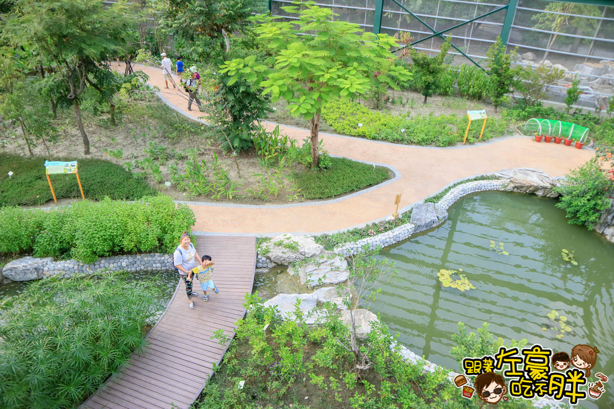 高雄金獅湖蝴蝶園-31