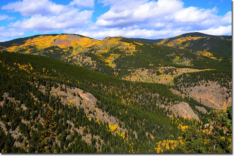 Fall colors, Mount Evans Scenic Byway, Colorado (39)