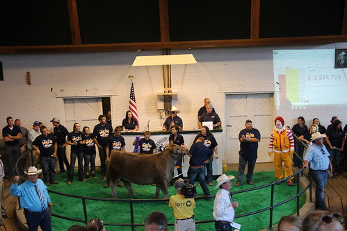 2017 Iowa Governor's Charity Steer Show