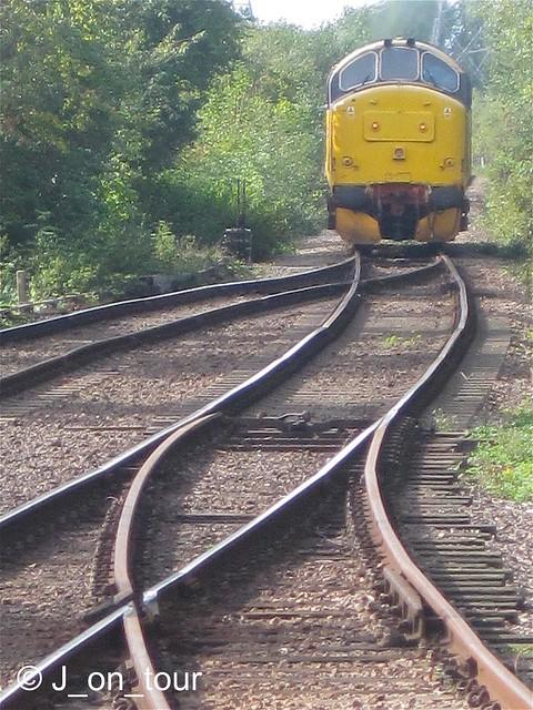 Tracks GJC_IMG_0092