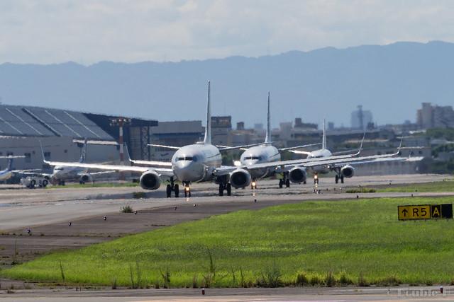Itami Airport 2017.8.3 (30)