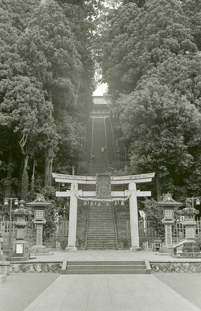 ズミクロン  仙台323.jpg