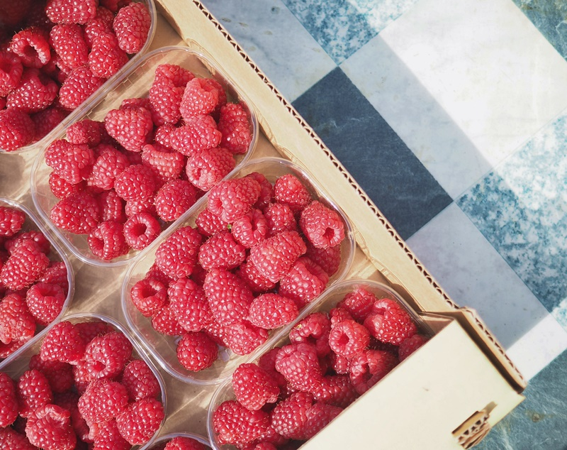vadelmia-rasberries