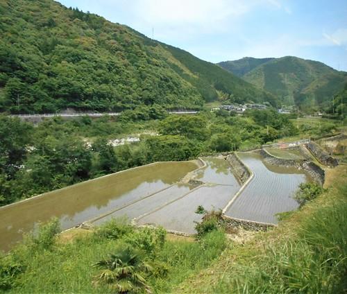 jp-kubokawa-kochi (6)