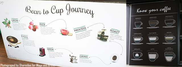 Bean to cup journey