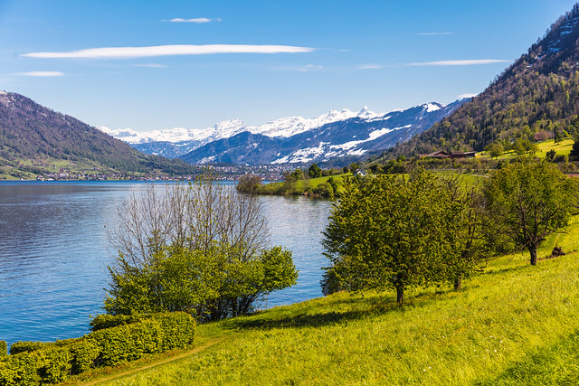 Spring in Switzerland, Canon EOS 5DS R, Canon EF 24-70mm f/2.8L II USM