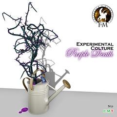 F&M * Experimental Colture Purple Death @ Lovecraft Festival 2017