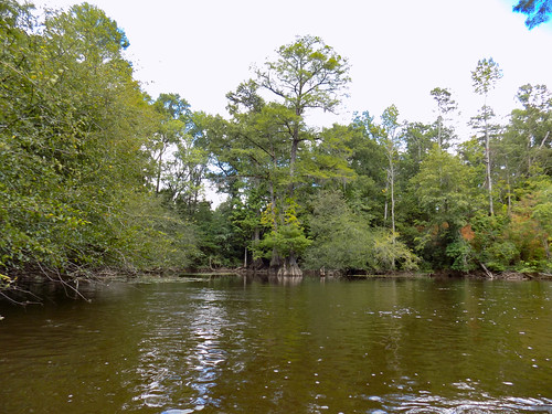 Lynches River with Lowcountry Unfiltered-8