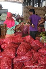 Bags of Red onions - Wholesale Fruit & Vegetable Market - Dambulla Sri Lanka