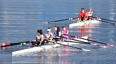 Nice day for rowing