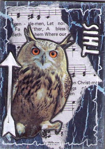 Hoot Owl 7of8