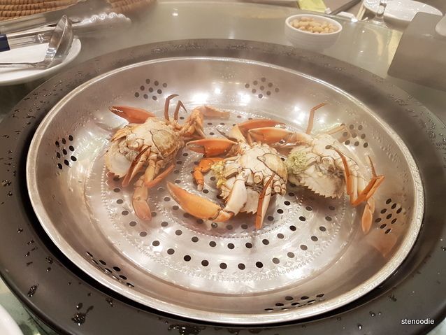 Yan crabs in steamer