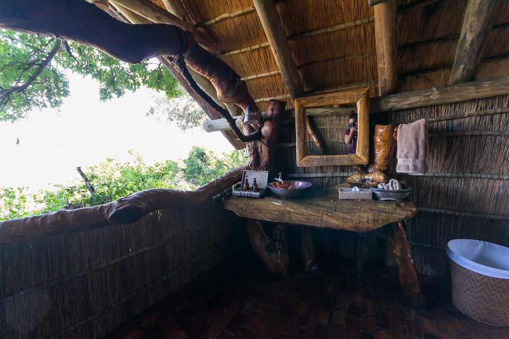 Tubu Tree, Botswana