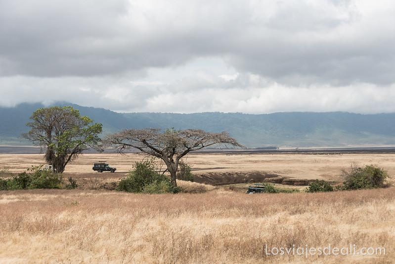 safari en el cráter de Ngorongoro