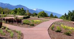062317 Red Butte Gardens 023
